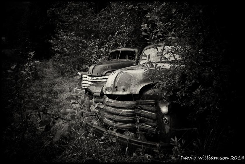 20140907-untitled shoot-16-Edit-Edit