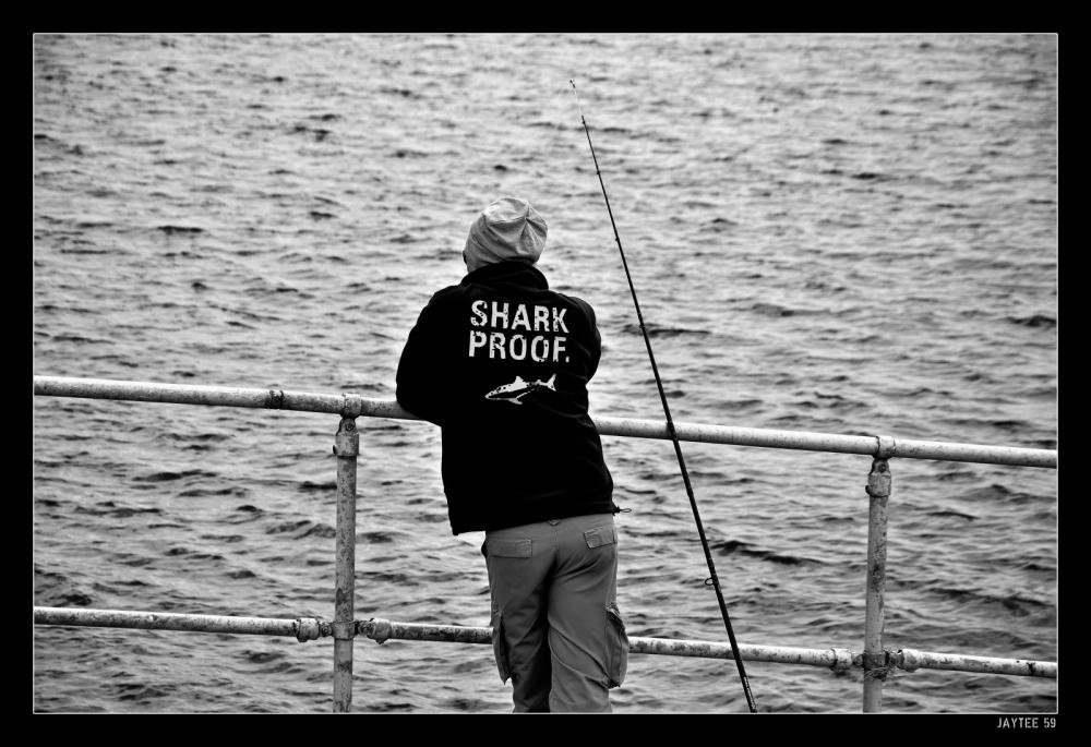 sharkproof_jaytee59_15