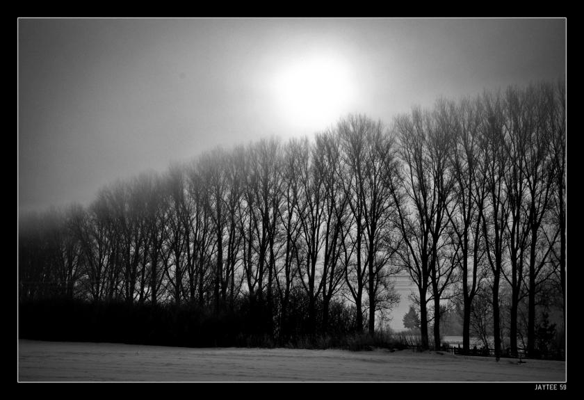 jaytee59_sunrise_15bw