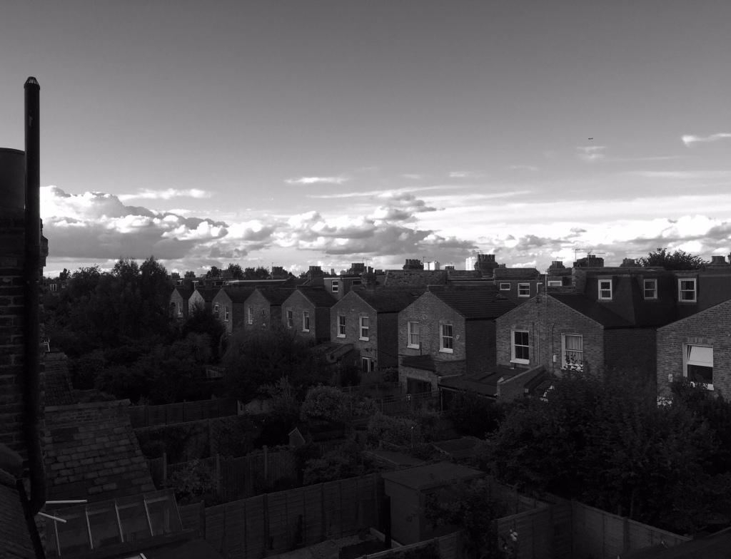 LondonRoofTops©PattiFogarty