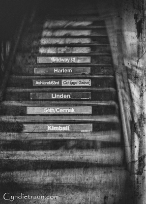 Chicago Steps-0653