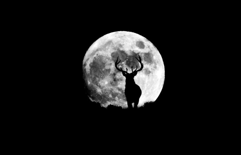 Edit Lune - 1