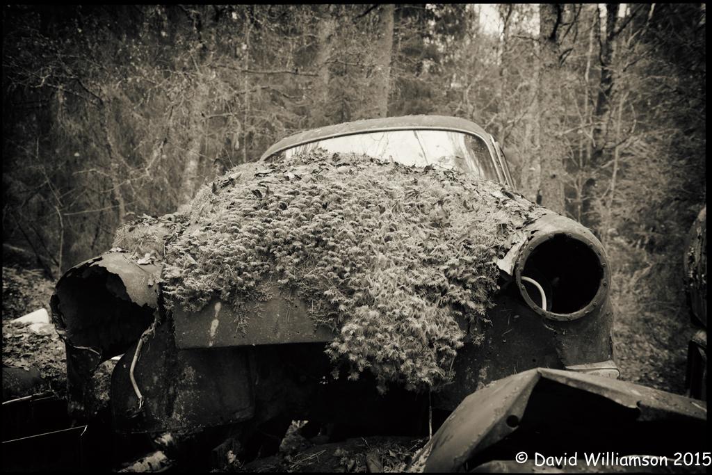 20151031-untitled shoot-115-Edit