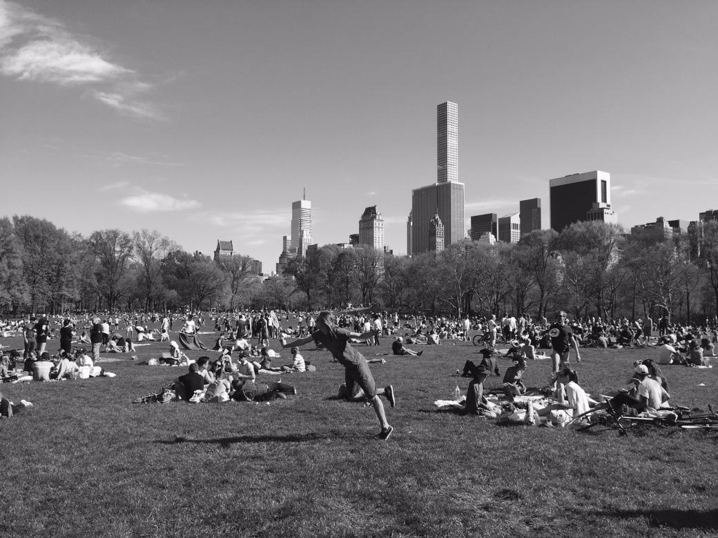 Central Park 1©PattiFogarty