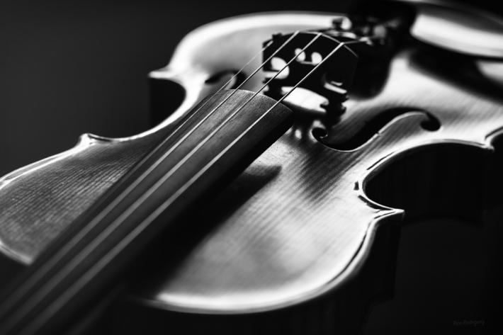 fiddle3