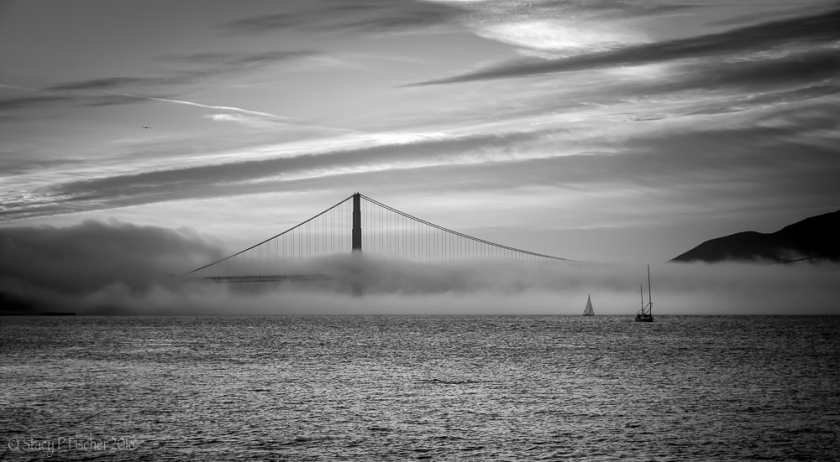 Fog blankets Golden Gate Bridge