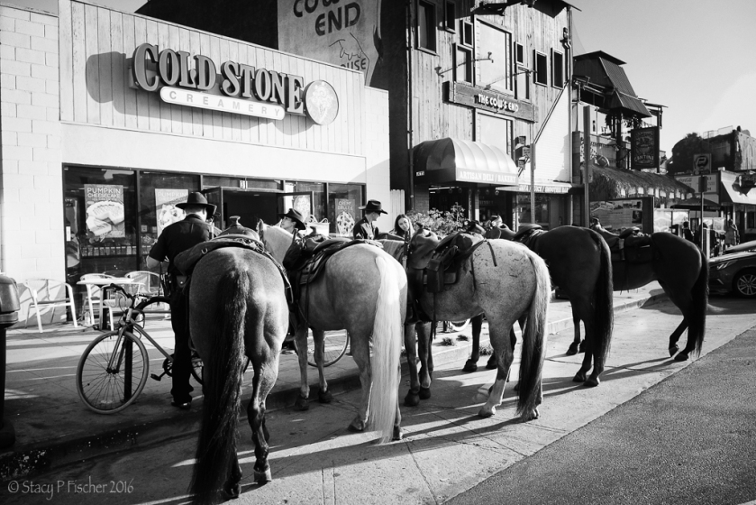 Police horses tethered outside Cold Stone Creamery, Venice Beach