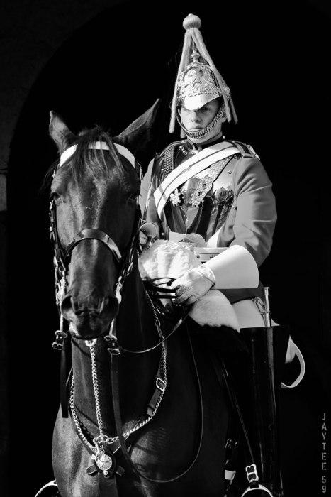 horseguard_jt59p