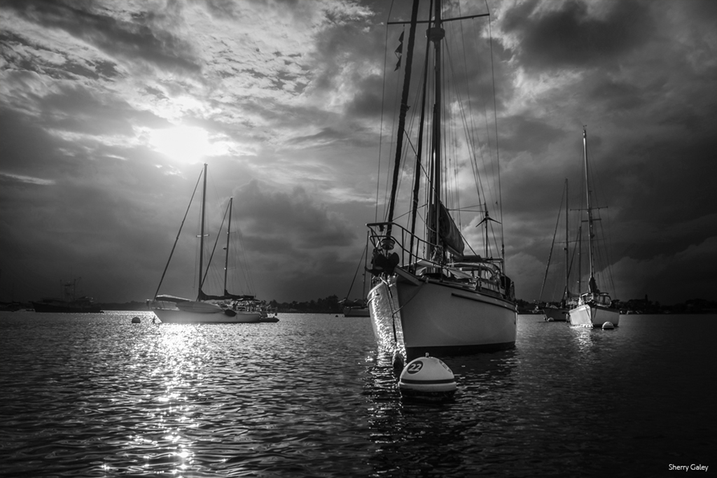sailboats-in-sunset-bay-bw-for-monochromia