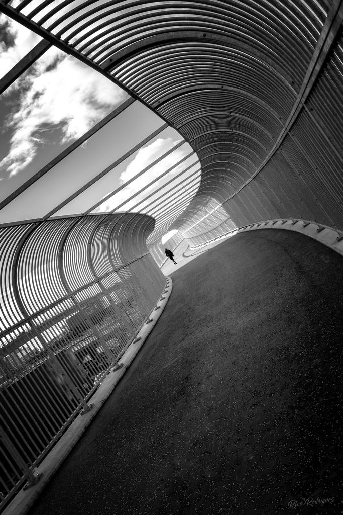 twisted-path