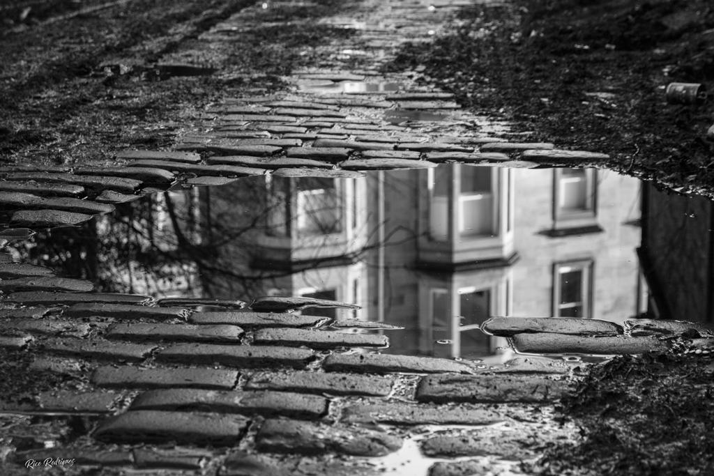 Glasgow-cobbles