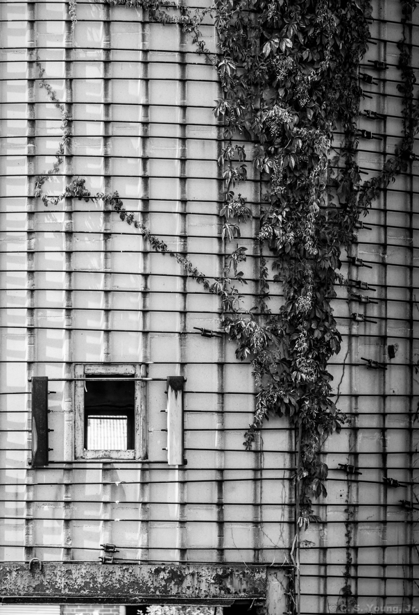 Link Taylor Silo Composition 1