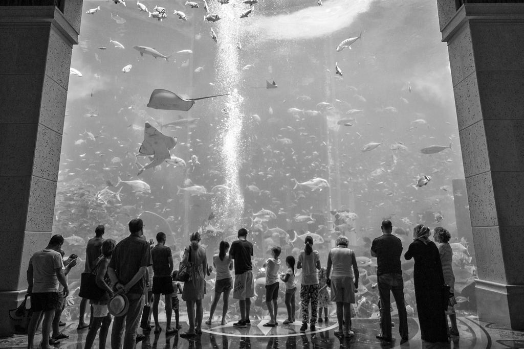 Atlantis1024