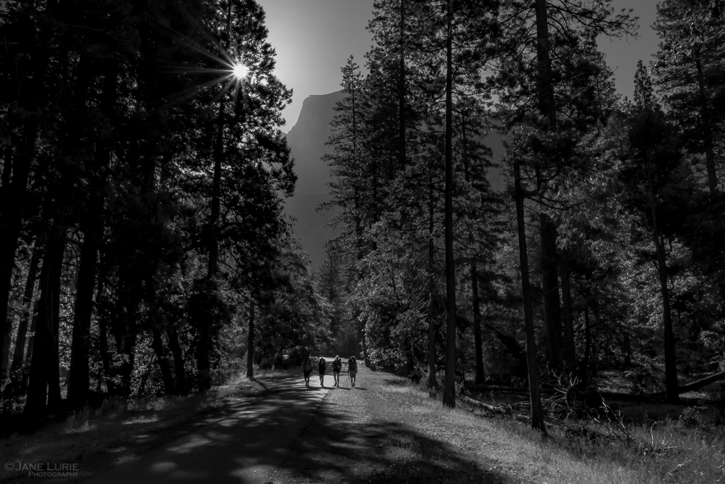 National Park, Photography, Black and White, Monochrome, Landscape, Nature, Fujifilm X-T2