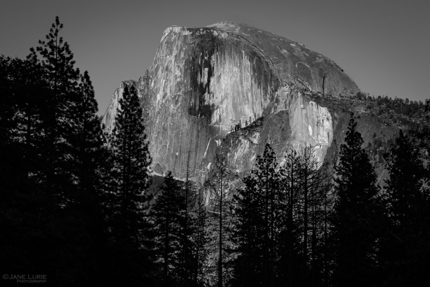 Yosemite, California, Photography, Black and White, Monochrome, National Park