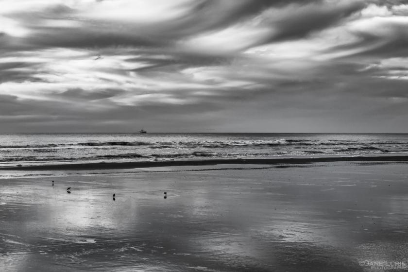 Landscape, Black and White, Photography, Nikon, South Carolina, Kiawah Island