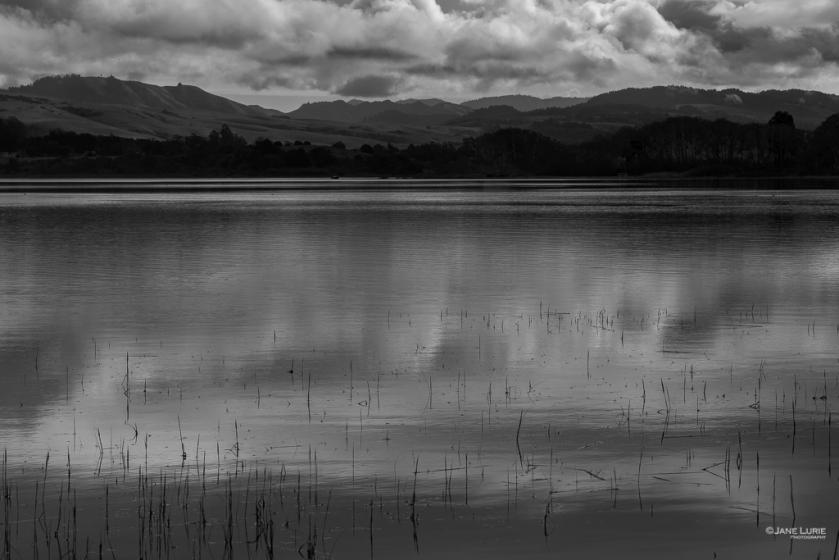 Black and white, Monochromia, Monochrome, Photography