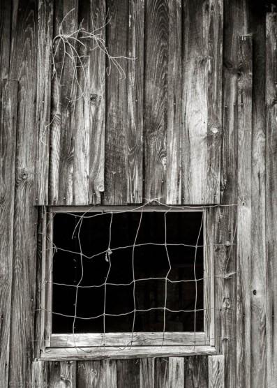 hedgecock-homestead-barn-abstract-1.jpg