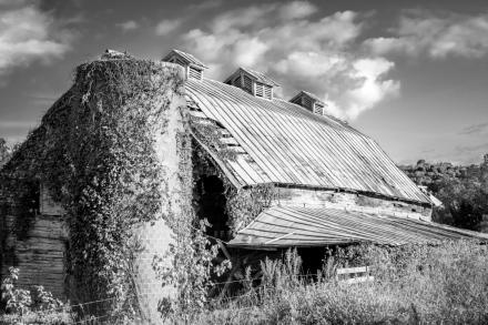 Abandoned barn in Grassy Creek, North Carolina in Ashe County near the border with Virginia
